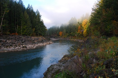 Cowlitz River below the Cowlitz Falls Dam near Glenoma, Washington