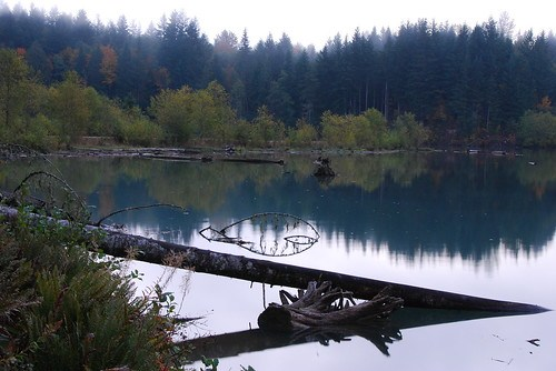 Lake Scanewa near Glenoma, Washington