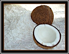 Olha o coco a, gennnte... Ralado na hora! - Coconut in the market street.