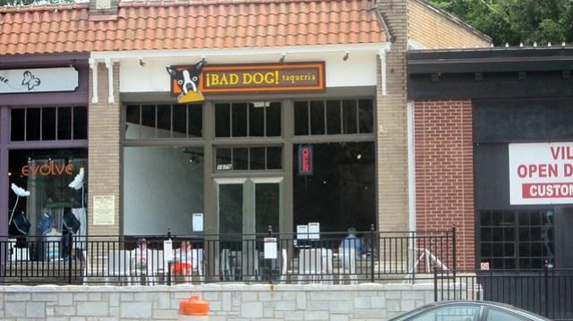 bad dog taqueria