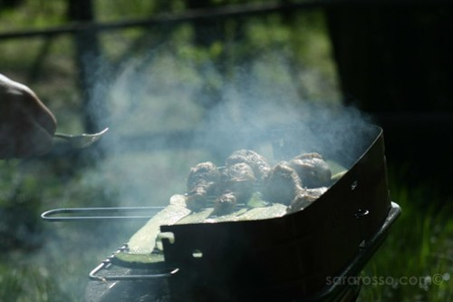 Time for Barbecue, Monte Barro, Regional Park, Province of Lecco