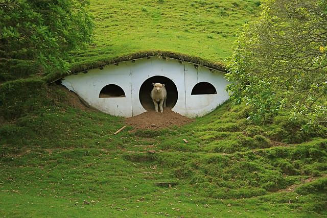 In Hobbiton
