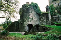 At Blarney Castle