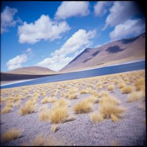 desert lagoon