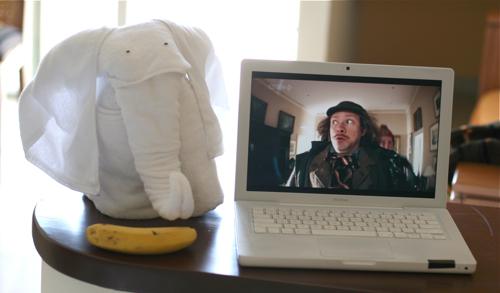 Sir Digby Chicken Caeser & elephant