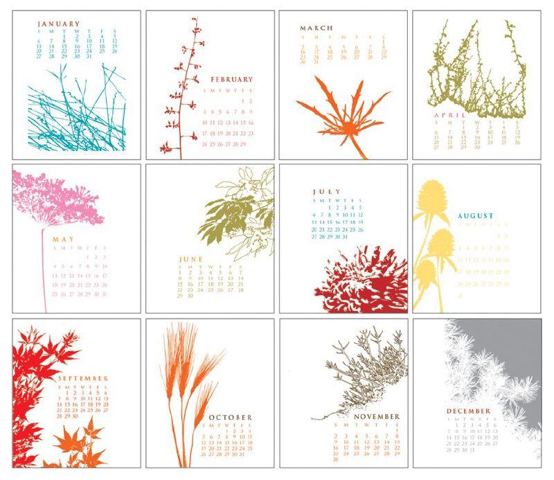 Anna Cote {new} 2008 Calendar