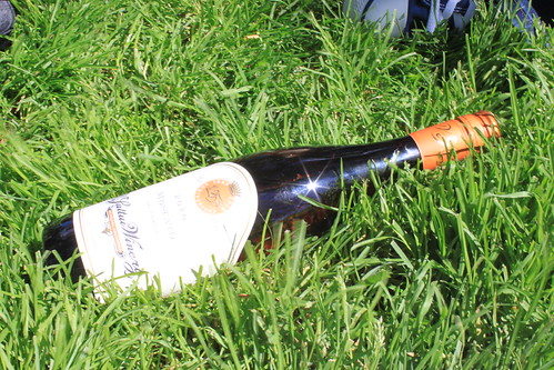 wine in grass