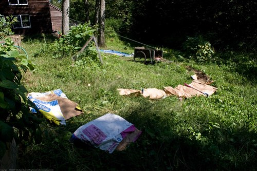 Permaculture: 1st bed arc