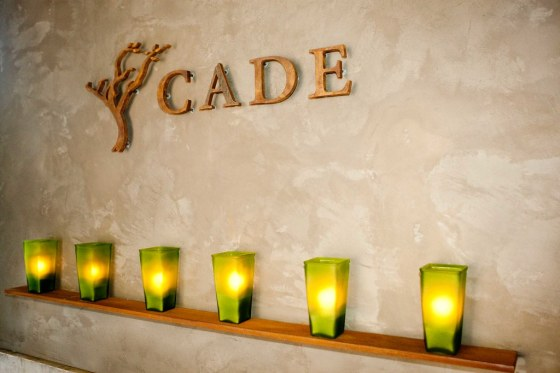 Inside CADE Winery with Haute Living, To kickoff the 2009 Auction Napa Valley in style, Haute Living magazine, the region's premier luxury lifestyle publication, partnered with CADE Winery for a special Auction Eve Kick-Off event.