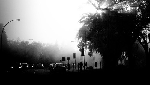 Foggy Morning at the University (2c)