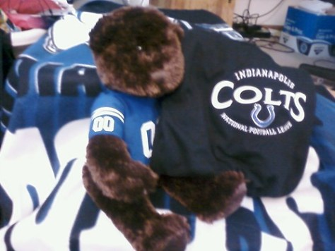 my mommy rocks! 2 colts shirts, and a teddy/blanket combo! shirts smell like home, too!