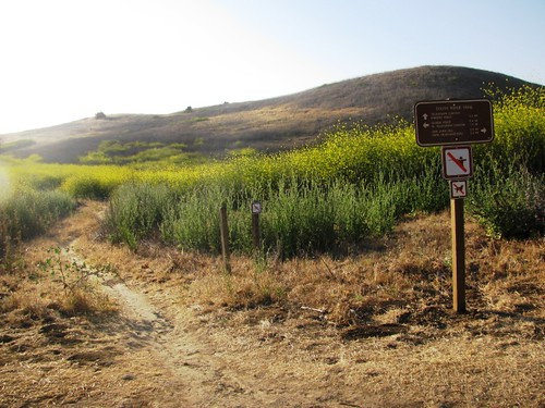 Chino Hills State Park Sunset Hike