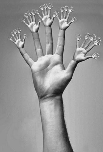 Hands-hands-hands