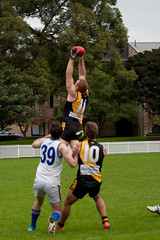 Balmain-Tigers-at-UNSW-ES-Round-9-2014-0022