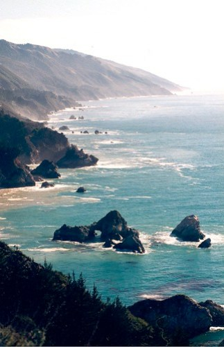 2100184355 7d8b89e797 Where The Forest Meets the Sea—Beach and Hiking Vacations At the Pacific