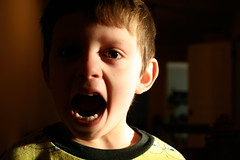 Boy shouting by clairity at Flickr