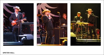 Mr Bob Dylan