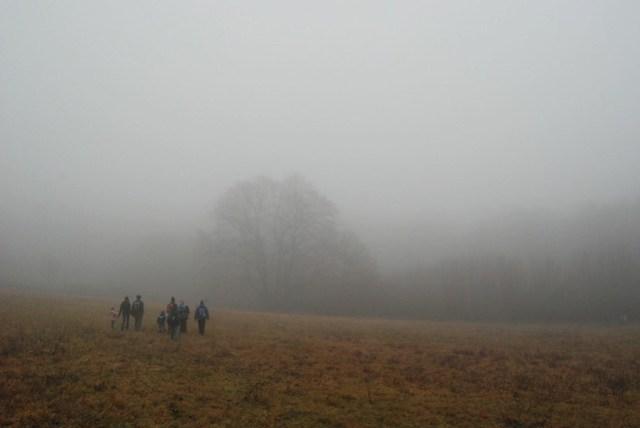 3-foggy hike