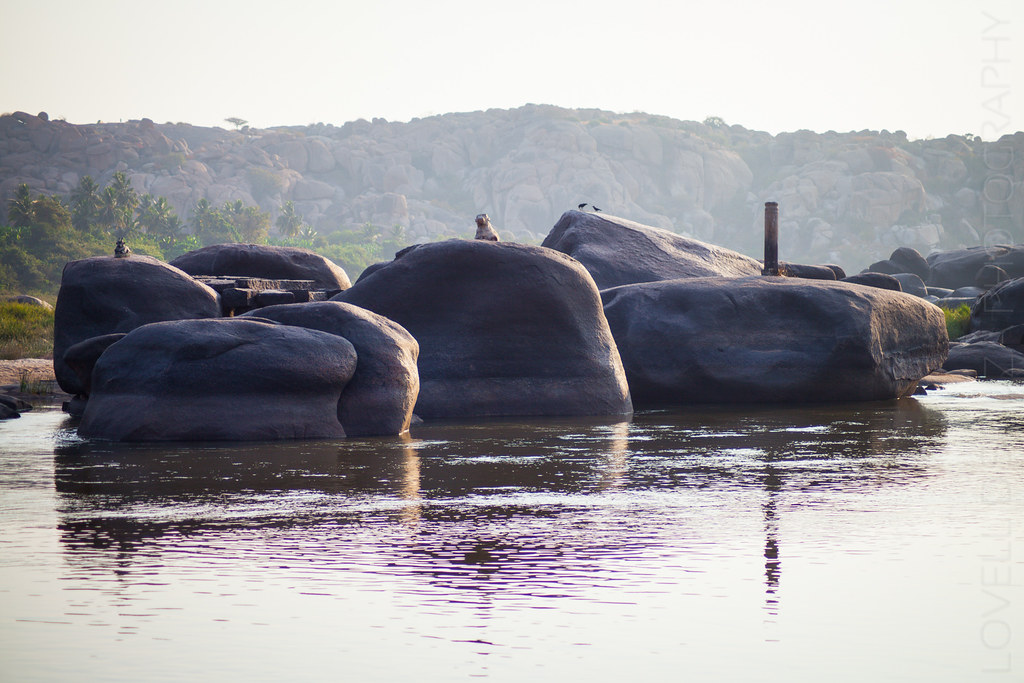 Nandi on the rocks