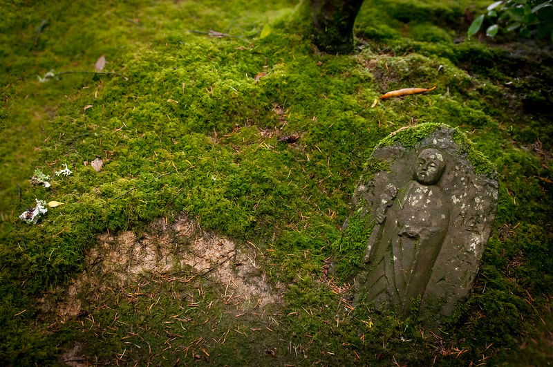 Portland Japanese Garden-14