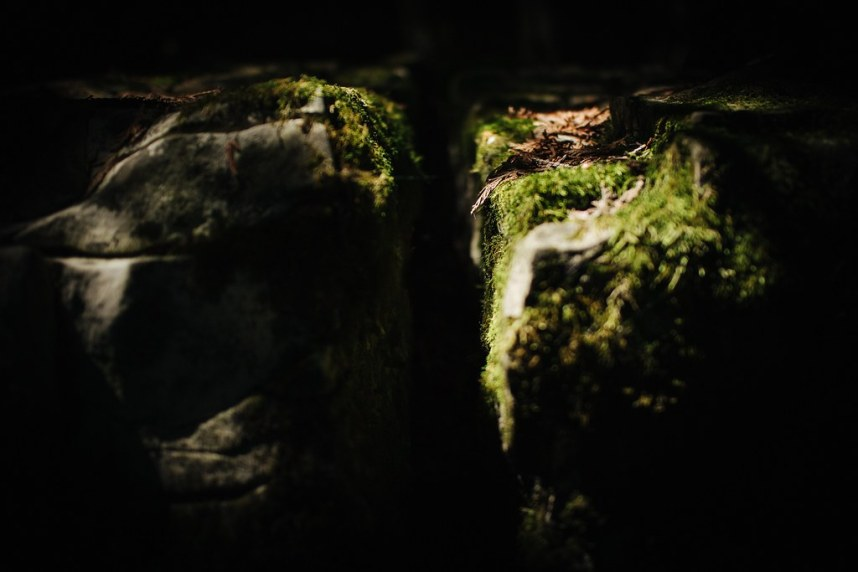 Flowerpot Island: Canyon