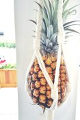 Hanging Pineapple | The Juice Truck Store Front
