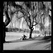 Lost Lagoon, 1964 copy