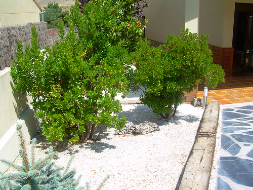 jardin combinado