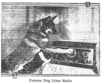 rintyradio