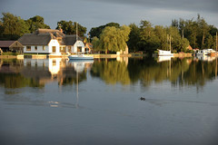 South Walsham Broad, Norfolk