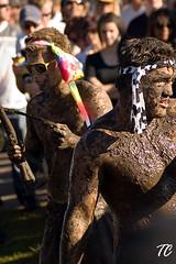 Groovin The Mud