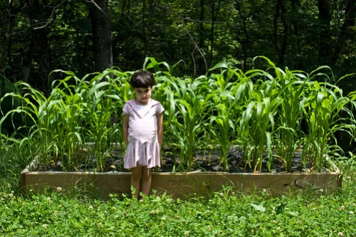 Humble Garden: KD and the popcorn