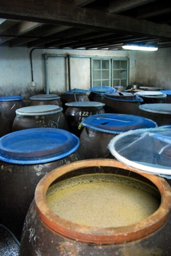 Clay Pots, Sewang Brewery (Jincheon Deoksan Brewery)