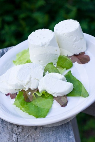 Making Chevre: Completed!