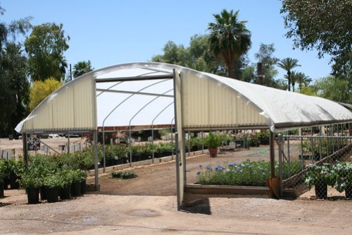 A visit to Baker's Nursery in Phoenix