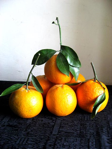 Good Luck Oranges (1/3)