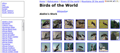 birds_of_the_world