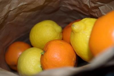 Bag of Seville Oranges and Lemons