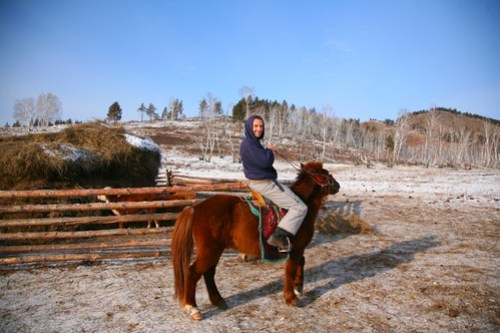 Riding a tiny Mongolian Horse