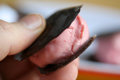 raspberry ice cream sandwich