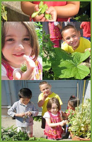 Children's Veggie Garden by DDA604.