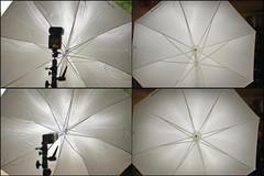 Strobist ballhead and umbrella test Strobist ballhead and umbrella test 3493512371 076561ff9d m