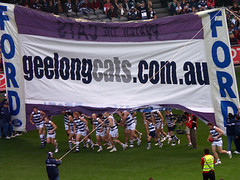 Geelong Cats 24