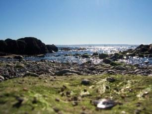 Beach weather again @ Dundarave