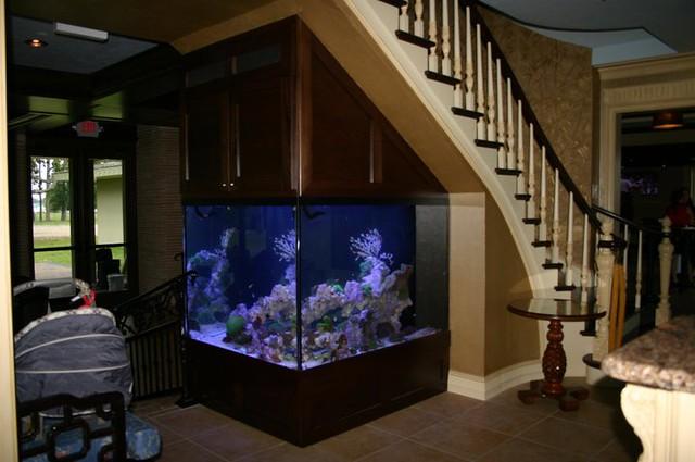 500 Gallon Reef Aquarium | Flickr   Photo Sharing!