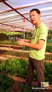 Mr. Felix Tan