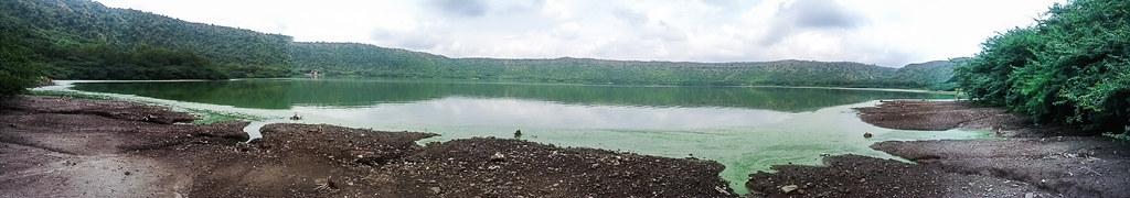 Algae at the Lonar lake