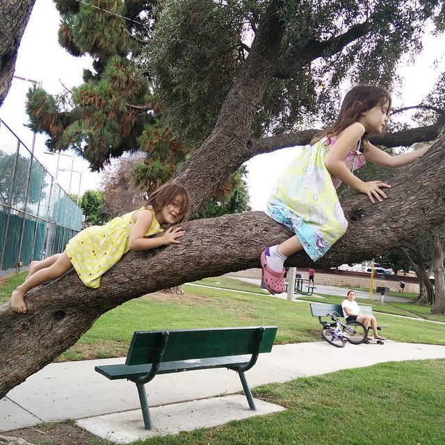 The best playground is a tree... #magicalchildhood