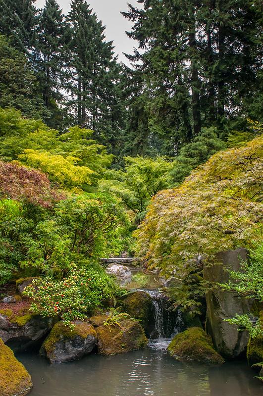 Portland Japanese Garden-8