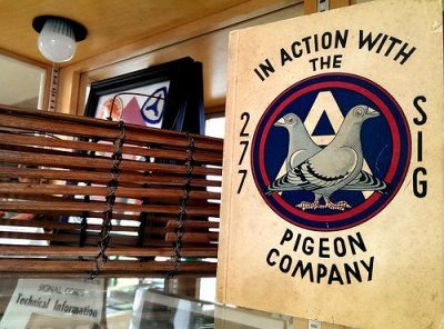 Signal Corps pigeon memorabilia